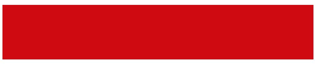 ManualMaster Congres21 logo